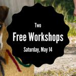 Free Workshops