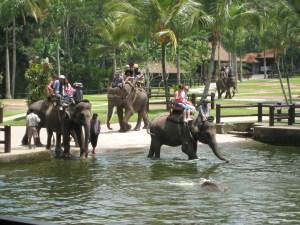 Phuket Ideal for the Adventurous Soul