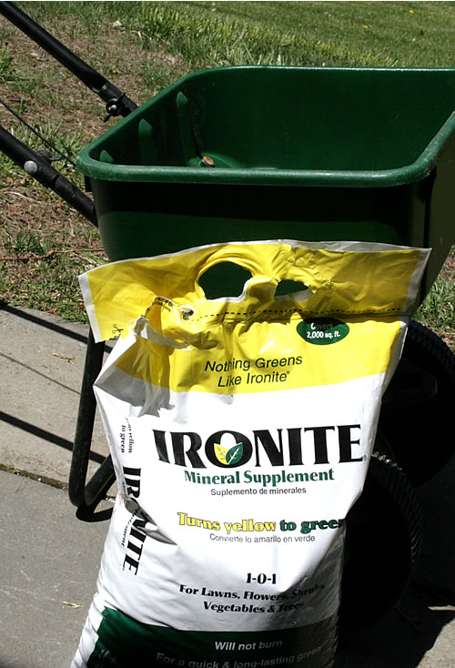 Ironite Spring Fling Must-haves For A Neglected Lawn