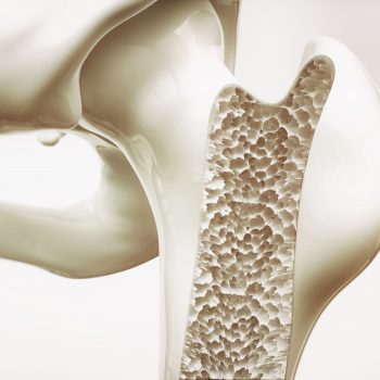 Your Bones Need More Than Calcium - Your Longevity Blueprint Dr
