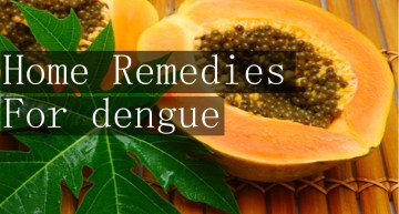 Prevent and Treat Dengue: 6 Home Remedies