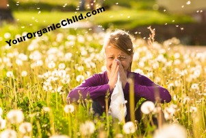 Product Review & Tips On How To Manage Hay Fever