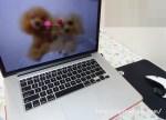 Mac Book Pro (Retina, Mid 2012)のSSDとバッテリー交換