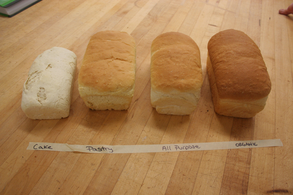 All Flours Aren39t Equal A Bread Experiment