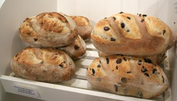 Sourdugh Fig & Walnut, Kalamata loaves