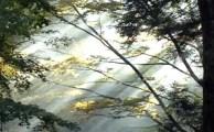 【ソウルメイト:7/30(土)開催☆申込受付中!】近隣エリアのご紹介です♪