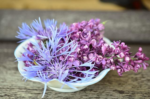 flowers-765781_640