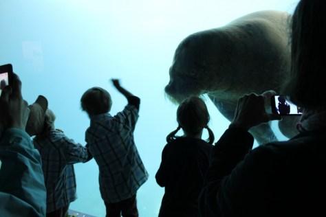 Tierpark Hagenbeck Zoo in Hamburg Germany via ZaagiTravel.com
