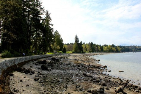 View of the beach and sea wall at Stanley Park in Vancouver, British Columbia, Canada via ZaagiTravel.com