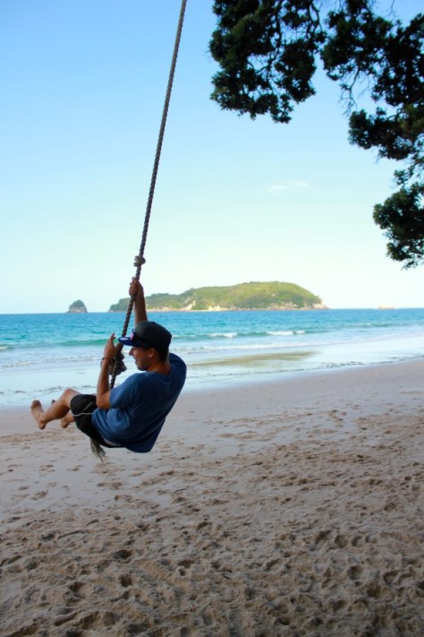Tree swing at Hahei Beach in Coromandel Peninsula, New Zealand via ZaagiTravel.com