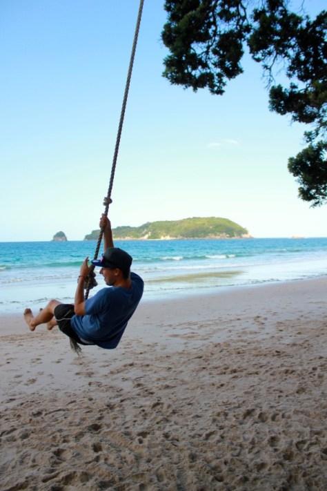 Tree swing at Hahei Beach in Coromandel Peninsula, New Zealand via ZaagiTravel.com