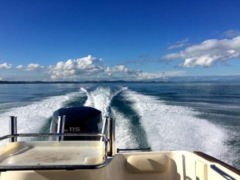 Fishing on the Hauraki Gulf in Auckland, New Zealand via ZaagiTravel.com