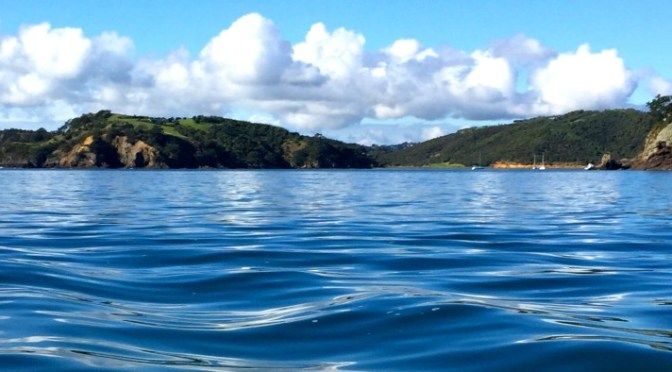A-Z Challenge: Pulling up poissons in the Hauraki Gulf