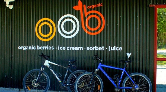 A-Z Challenge: Oob Organic Berry Farm & Ice Cream Stand in New Zealand