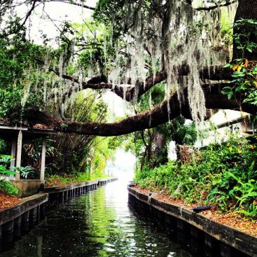 Winter Park Canal