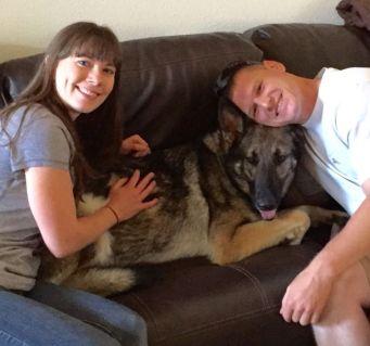 Dog Obedience Training El Paso Tx