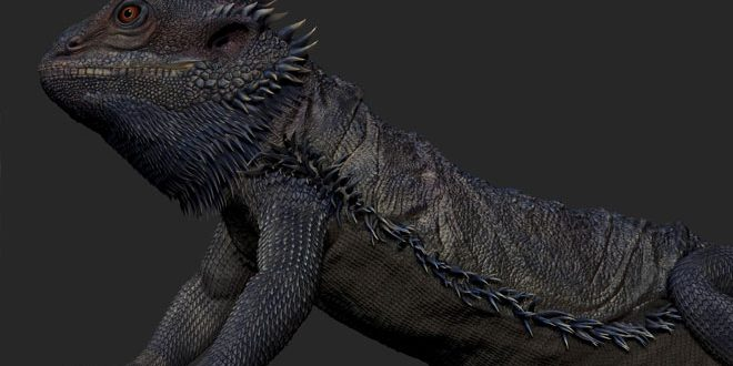 Mohan Name 3d Wallpapers The Bearded Dragon 3d Project By Mohanad Hossam Zbrushtuts
