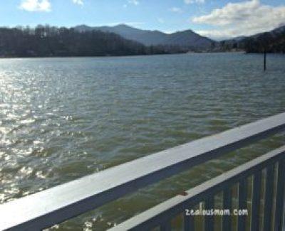 views from my run 7