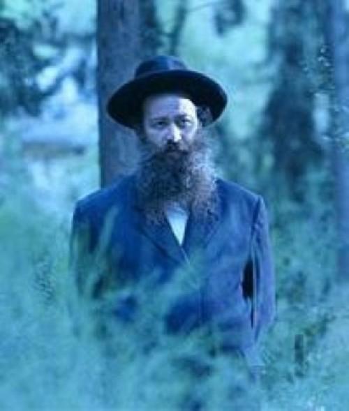מתבודד ביער בתפילה