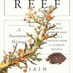 «The Reef» – über die menschliche Konzeption des grössten Korallenriffs