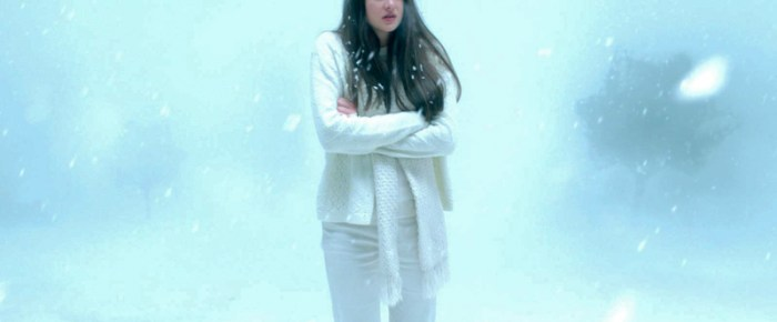 Erwachende Sexualität – Gregg Arakis «White Bird in a Blizzard»