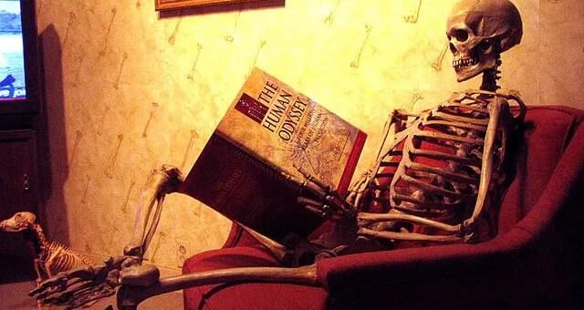 leted, Reading Skeleton