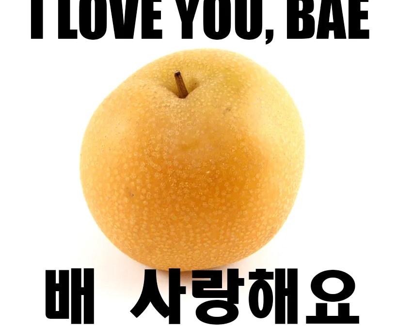 I Love You, Bae 배 사랑해요