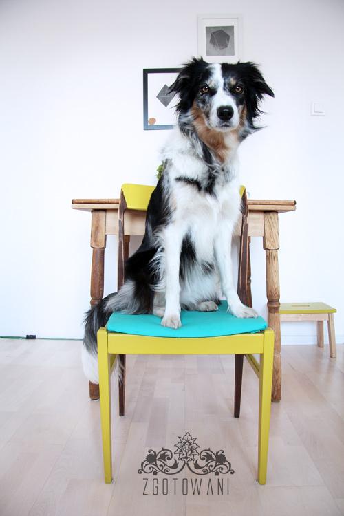 krzeslo-4
