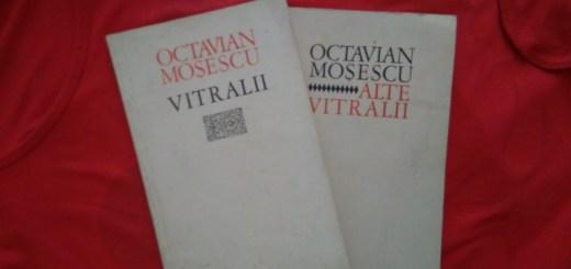 02 Vitralii