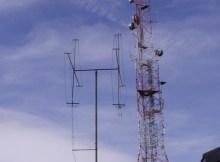 antena din parang
