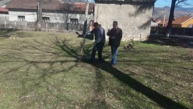 Petrila / Peste 500 de noi arbori plantați de primăria orașului