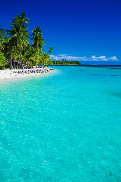 Palm Island Fiji & New Zealand South Island Express Tour: Tropical