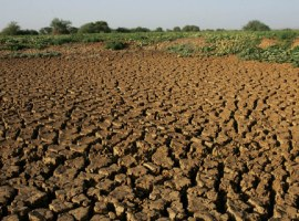 Zim should intensify climate change mitigation efforts