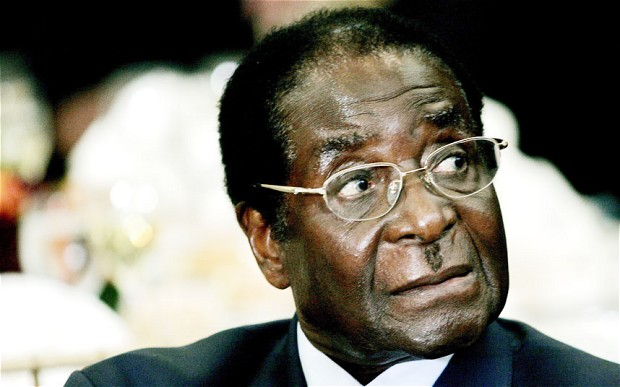 Mugabe's Travels Draw Criticism at Home
