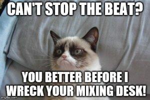 Grumpy Cat Bed