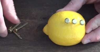 He Stuck Nails Into A Lemon To Create Fire...And It Actually Worked!