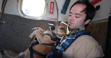 This Daredevil Dog Is Not Afraid Of Jumping Out Of Planes...Or Anything Else.