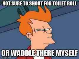 fry toilet roll