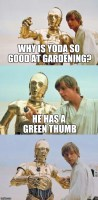 Bad Pun Luke Skywalker
