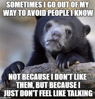 Introvert confessions