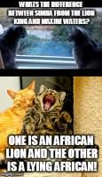 joke for cat weekend