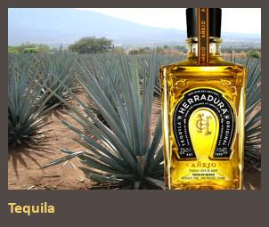 tequila-lead-fin