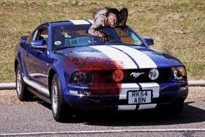 Zombie Mustang