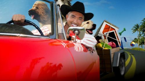 El encantador de perros, César Millán, visitará el Palacio de los Deportes cesar