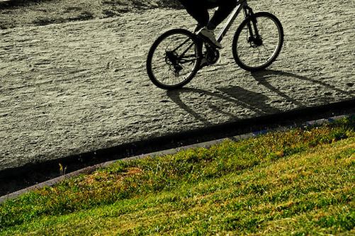 turismo bicis madrid  Visitas guiadas gratuitas a pie y en bici por Madrid hasta el sábado turismo bicis madrid