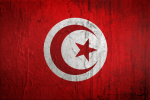tunisia_flag_by_fareseleil-d562yju