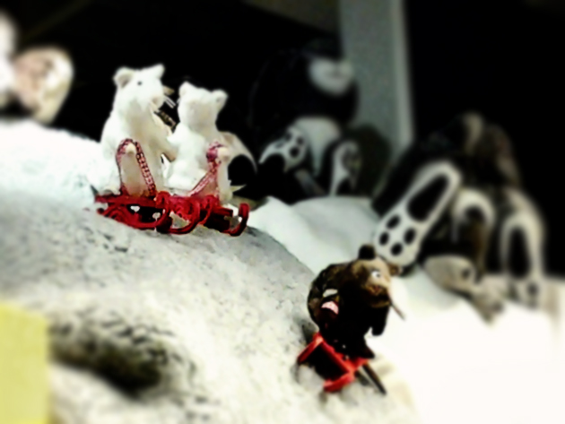 mice on sledge