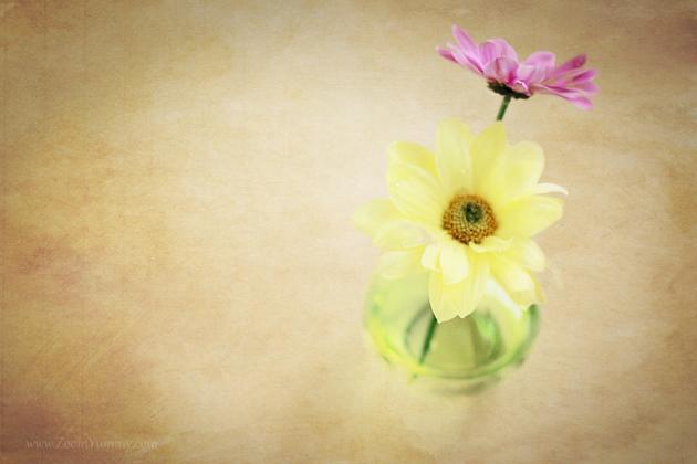 flower wallpaper 630 - 2 - with watermark