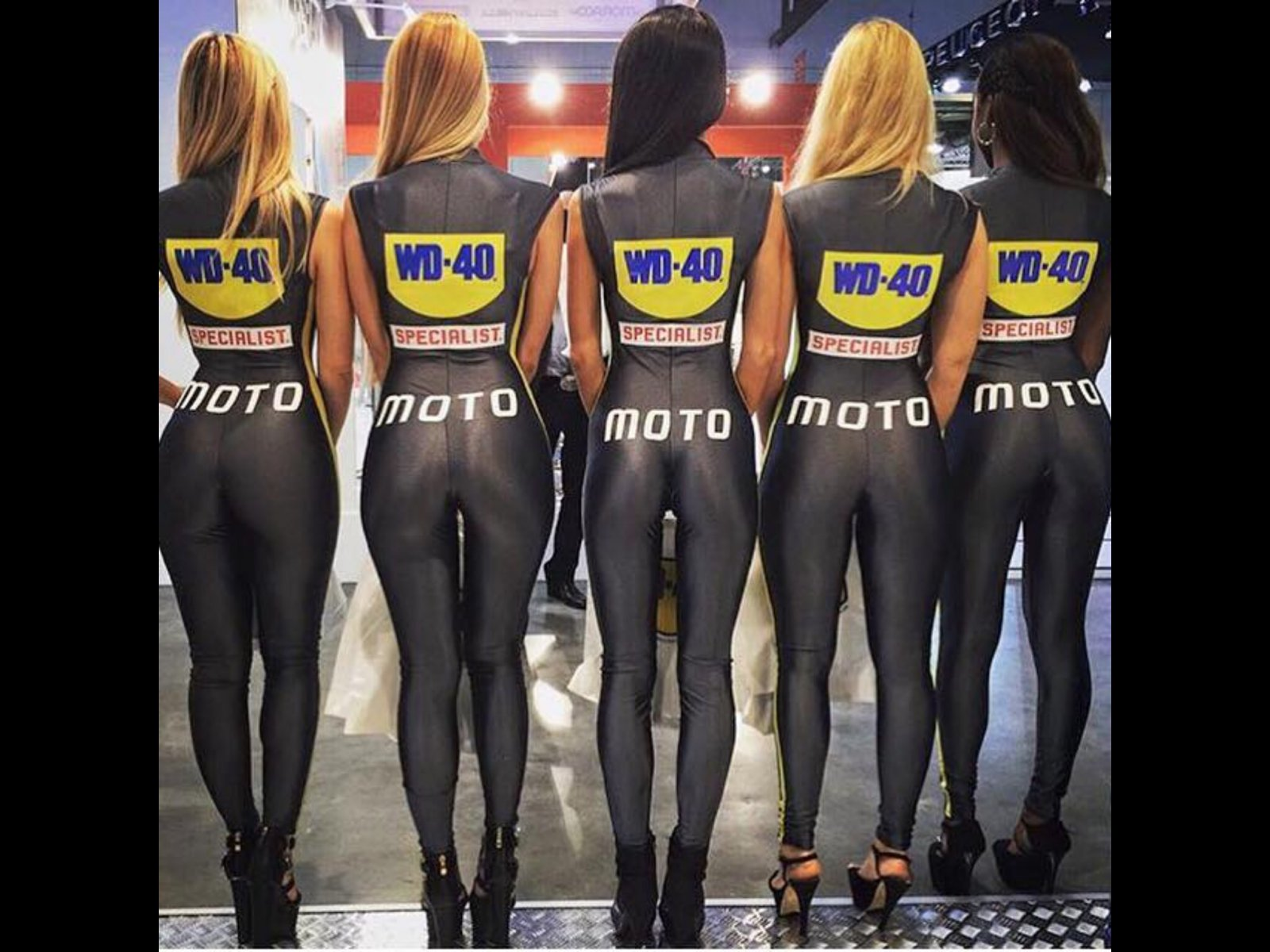 Girls Profile Wallpaper Love Wd40 Bmw Z1 Z4 Z8 Z3 Forum And Technical Database