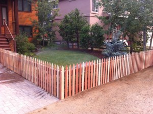 Decorative fence and landscape